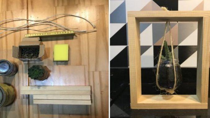 Faça você mesmo: nicho com cacto suspenso   ZAP em Casa