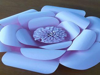 Flor de papel: veja o faça você mesmo   ZAP em Casa