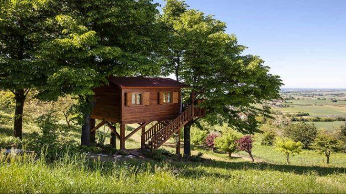 Programando uma viagem? Que tal se hospedar em uma casa na árvore?