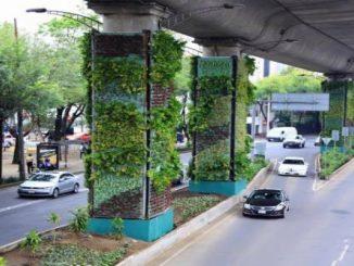 Conheça o Via Verde, maior projeto de naturação do mundo