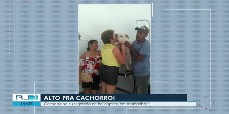 Cachorro é resgatado por helicóptero dos bombeiros após ficar 12 dias preso em montanha